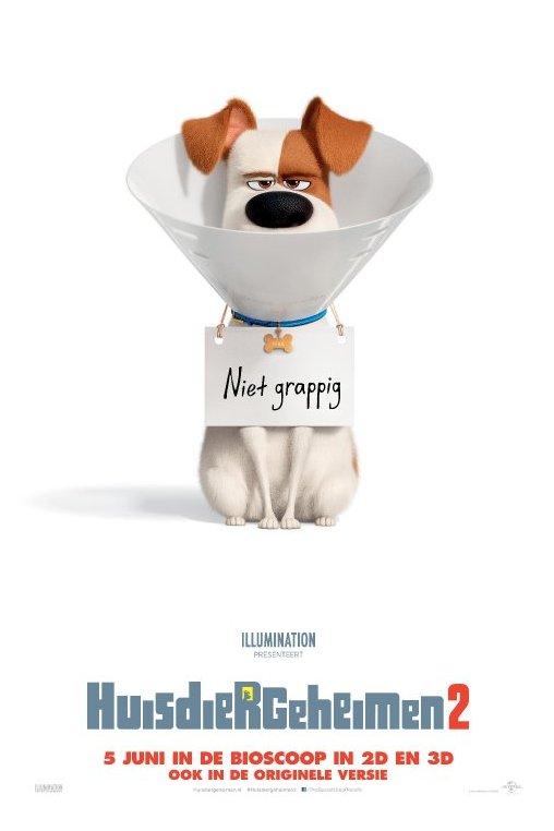 Huisdiergeheimen 2. Een hond met een plastic hondenkraag draagt een bordje om zijn nek waarop staat: Niet grappig.