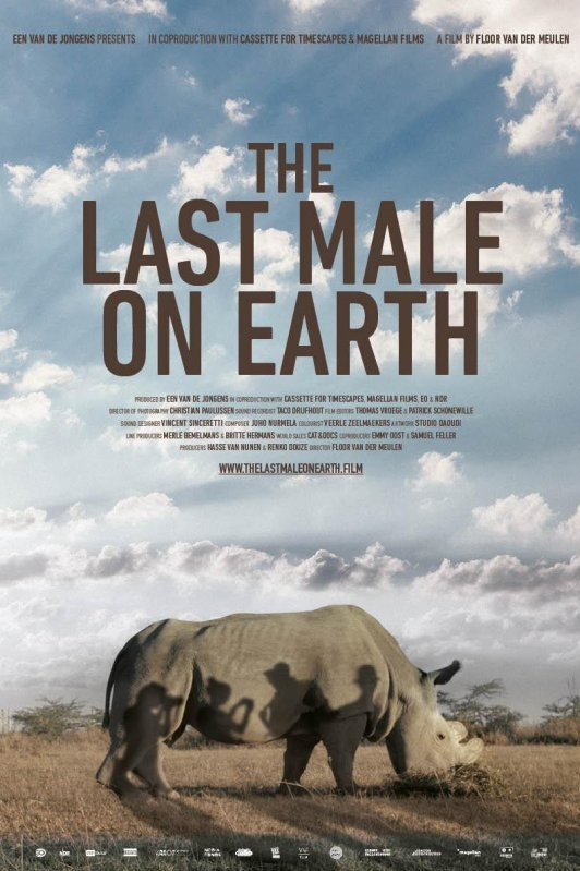 The Last Male on Earth. Een neushoorn staat in de zon te grazen. Op zijn lijf de schaduwen van fotograferende mensen.