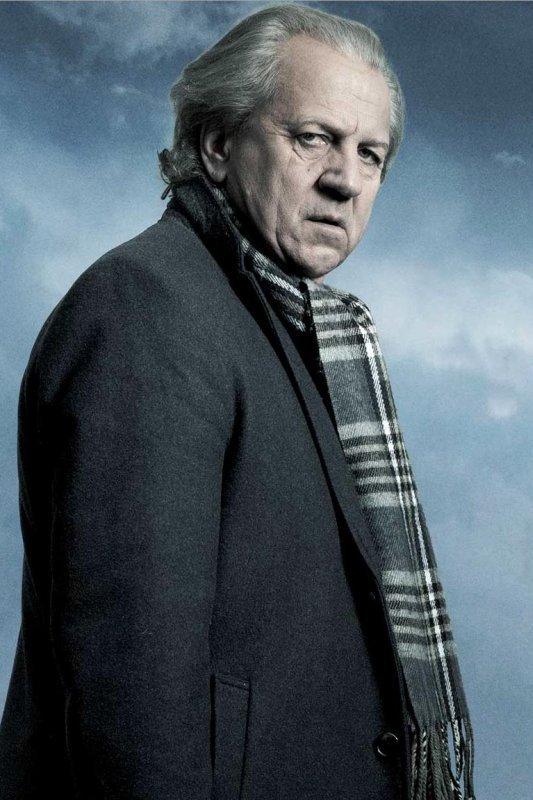 Witse. Een oudere man met grijze jas en geblokte sjaal kijkt bedachtzaam opzij. Achter hem een blauwgrijze wolkenlucht.