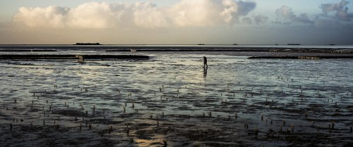 Een man loopt over een verlaten strand.