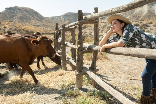 Isa leunt over het hek van een ranch en kijkt dromerig voor zich uit.